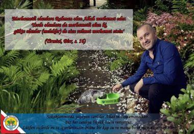 SOKAKLARIMIZDA YAŞAYAN CANLILAR ALLAH'IN BİZE EMANETİDİR